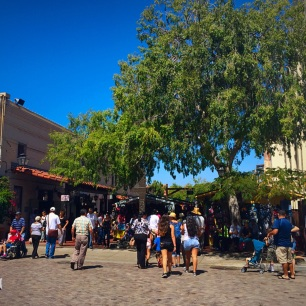 Entrance by plaza tree