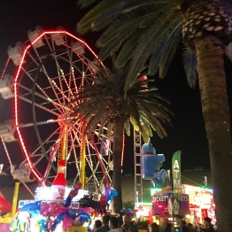 Multiple Ferris wheels located all around.