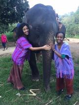 Hugging Elephant