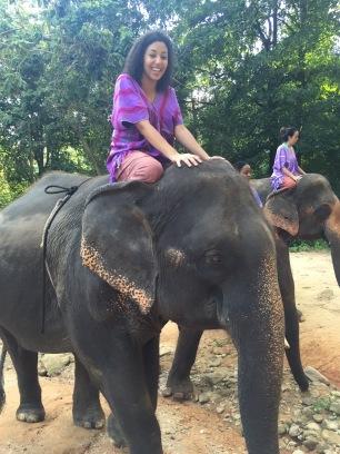 Riding Elephant